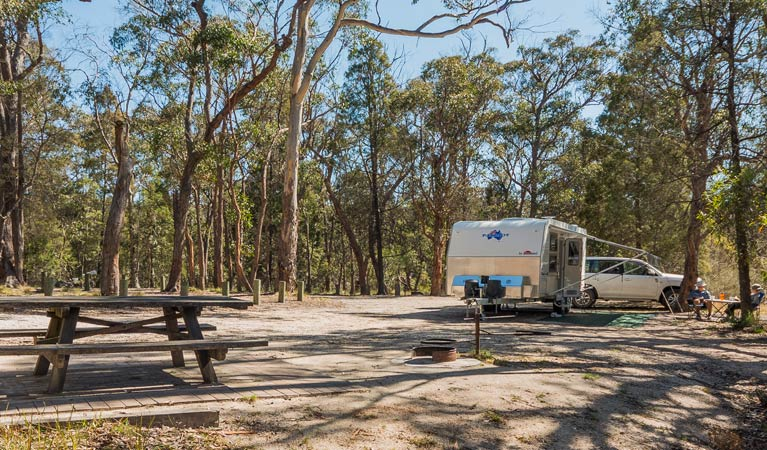Cypress-pine campground