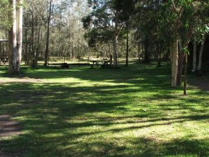 Jervis Bay Cabins and Hidden Creek Real Camping