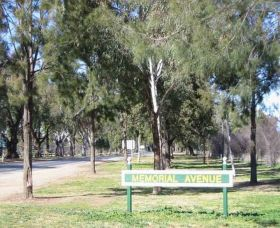 Memorial Avenue in Cowra