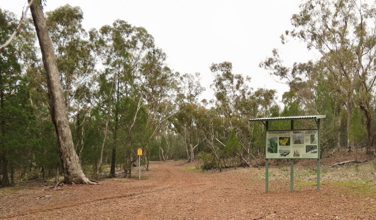 Little Llangothlin picnic area