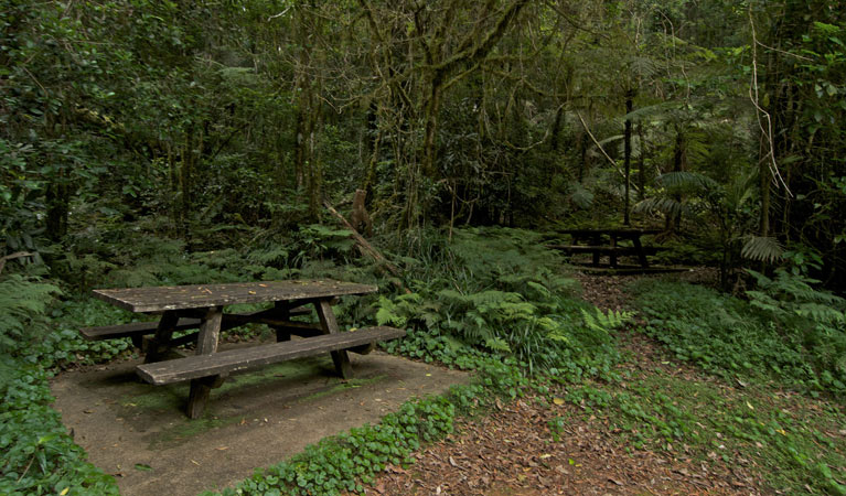 Brindle Creek picnic area
