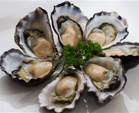 Tathra Oysters