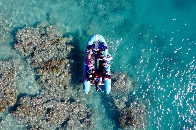 Glass-bottom boat tour with Whitehaven Beach