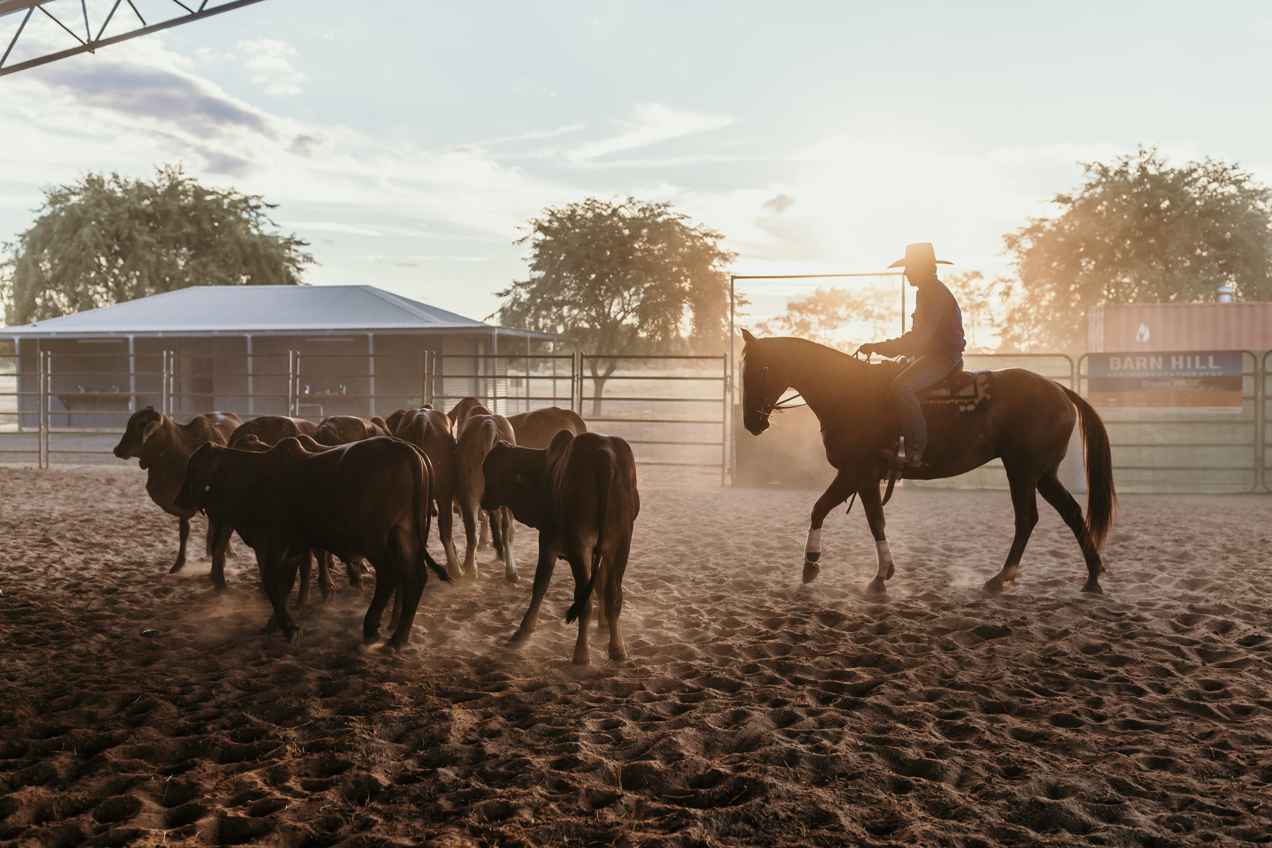 Katherine Outback Experience - Horse Riding Experience
