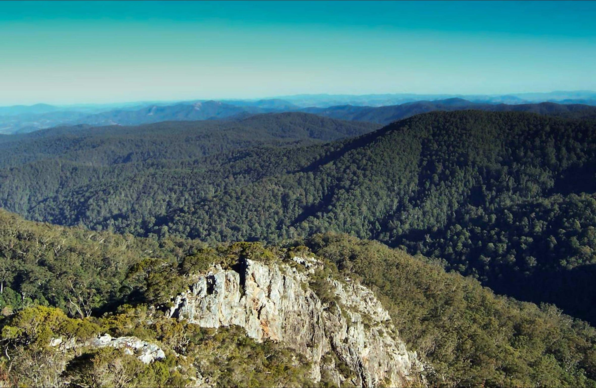 Rowleys Peak lookout