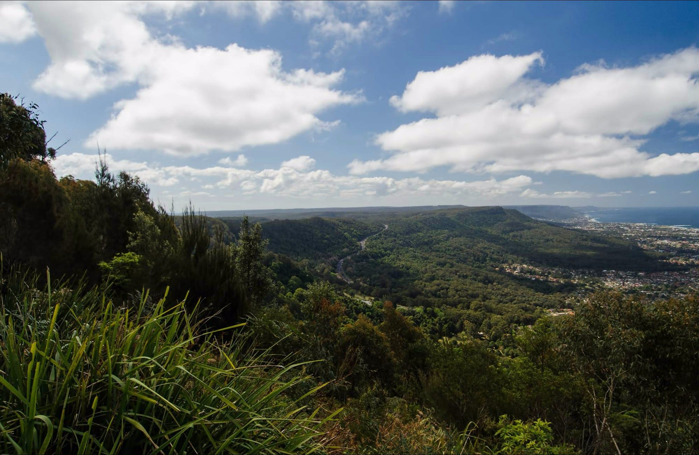 Illawarra Escarpment State Conservation Area