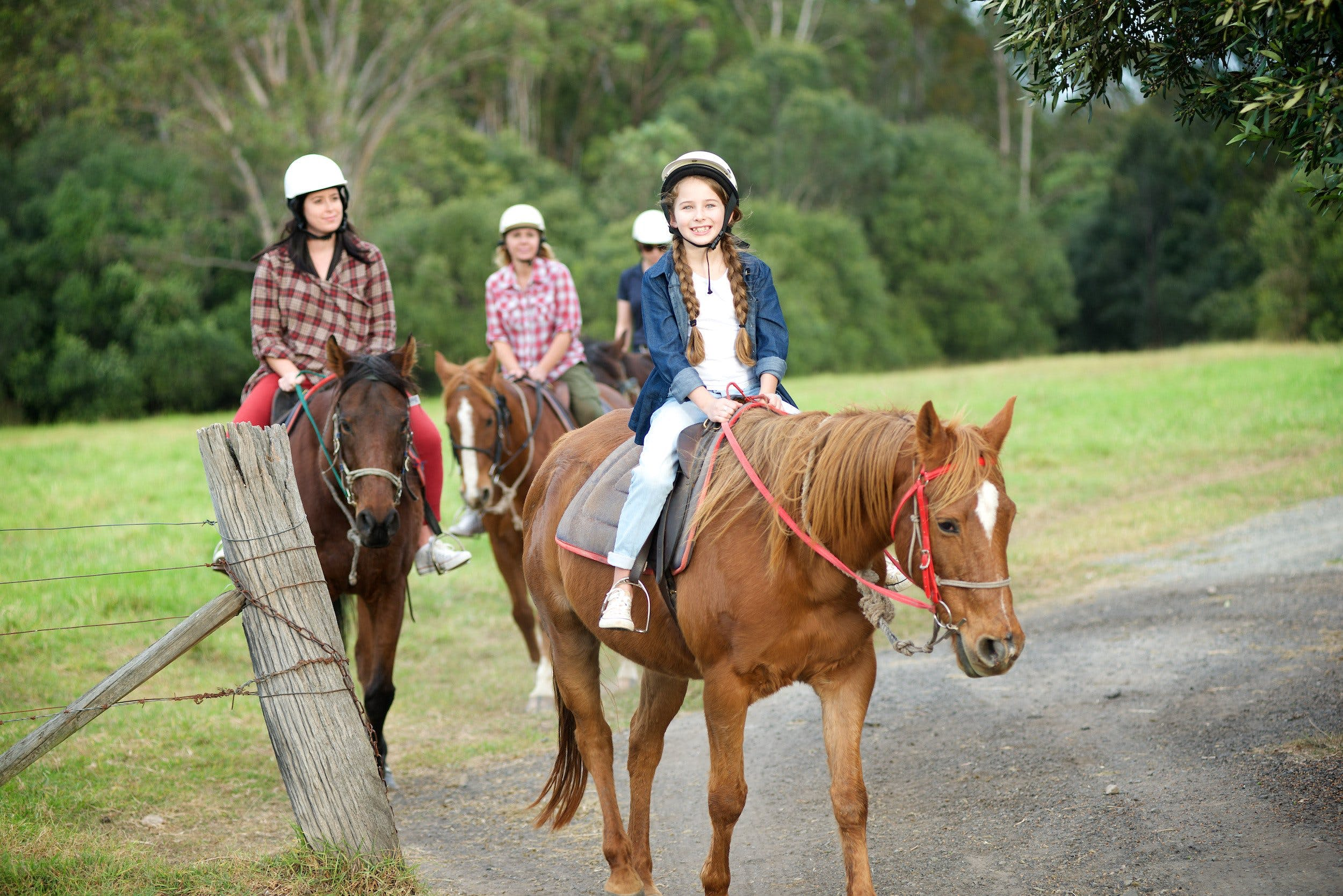 Scenic NSW Horse Riding Centre